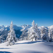 Deckenmodule Deckenmodul ab 70*70cm - Berg Winterlandschaft