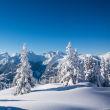 Deckenmodule Deckenmodul ab 60*60cm - Berg Winterlandschaft